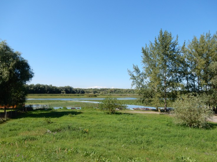 The nature reserve that looked a little like the Everglades